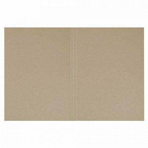 """Папка без скоросшивателя """"Дело"""", картон мелованный, плотность 440 г/м2, до 200 листов, BRAUBERG, 110928"""