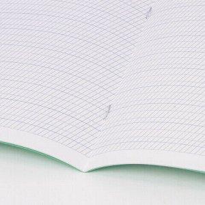 Тетрадь ВЕЛИКИЕ ИМЕНА. Пушкин А.С., 12л. частая косая С ДОПОЛНИТЕЛЬНОЙ ГОРИЗОНТАЛЬНОЙ, плотная бумага 80г/м, обложка офсет, BRAUBERG, 105718