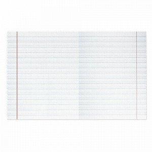 Тетрадь ВЕЛИКИЕ ИМЕНА. Толстой Л.Н., 12 л. частая косая линия, плотная бумага 80 г/м2, обложка тонированный офсет, BRAUBERG, 105719