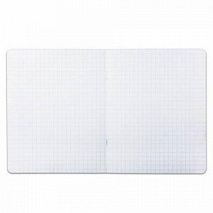 Тетрадь 12 л. BRAUBERG КЛАССИКА, крупная клетка, обложка картон, АССОРТИ (5 видов), 103275