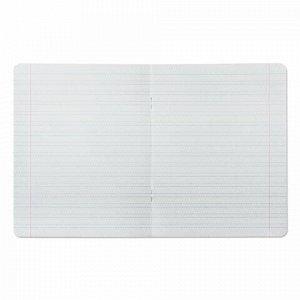Тетрадь 12 л. BRAUBERG КЛАССИКА, частая косая линия, обложка картон, АССОРТИ (5 видов), 103278