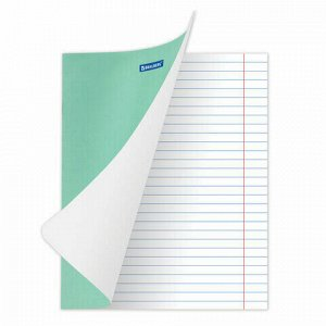 """Тетрадь BRAUBERG """"EXTRA"""" 18 л., линия, плотная бумага 80 г/м2, обложка картон, 105709"""