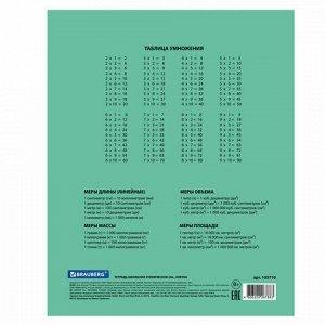 "Тетрадь BRAUBERG ""EXTRA"" 24 л., клетка, плотная бумага 80 г/м2, обложка картон, 105710"