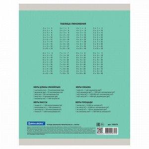 """Тетрадь 24 л. BRAUBERG """"ЭКО"""" клетка, обложка плотная мелованная бумага, ЗЕЛЕНАЯ ПАСТЕЛЬНАЯ, 105679"""