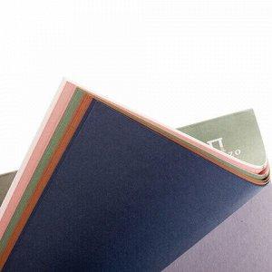 """Папка для пастели/планшет А4, 15 листов, 5 цветов, 160 г/м2, хлопок 40%, тиснение """"Холст"""", """"Теплые цвета"""", ПЛ-8909"""