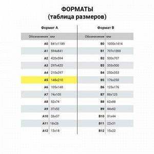 Сменный блок для тетрадей на 4 кольцах А5 120 л., BRAUBERG, ПОВЫШЕННОЙ ПЛОТНОСТИ, белый, 403638