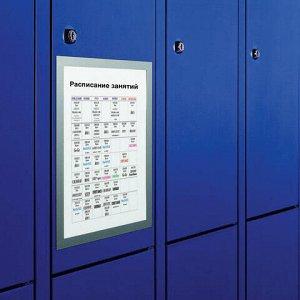 Рамки настенные для рекламы DURAFRAME, А4, КОМПЛЕКТ 2 шт., магнитные, самоклеящиеся, серебристые, DURABLE (Германия), 4872-23