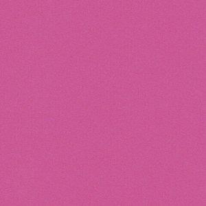 """Цветная бумага А4 ДВУХЦВЕТНАЯ МЕЛОВАННАЯ, 10 листов, 20 цветов, в папке, BRAUBERG, 200х280 мм, """"Дельфин"""", 129923"""
