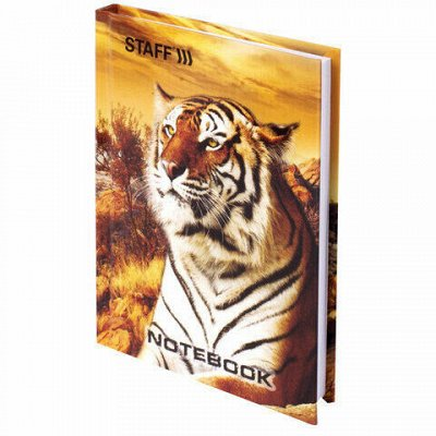HATBER и ко — яркая качественная доступная канцелярия — STAFF-Записные книжки — Офисная канцелярия