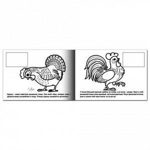 """Книжка-раскраска А5, 4 л., HATBER с наклейками, Мои первые уроки, """"Домашние птицы"""", 4Р5н 05825, R002699"""