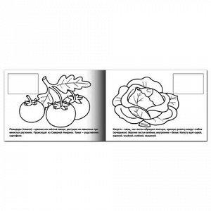 """Книжка-раскраска А5, 4 л., HATBER с наклейками, Мои первые уроки, """"Овощи"""", 4Р5н 05827, R133163"""