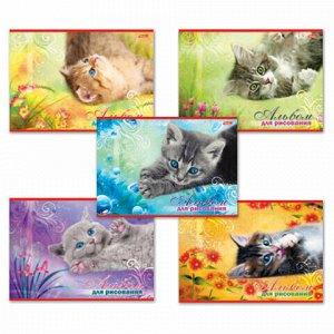"""Альбом для рисования, А4, 20 листов, обложка картон, HATBER, 205х290 мм, """"Котята"""", 20А4В, A17357"""