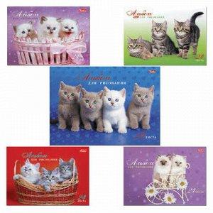 """Альбом для рисования, А4, 24 листа, спираль, обложка картон, HATBER, 205х300 мм, """"Милые котята"""", 24А4Всп, A075449"""