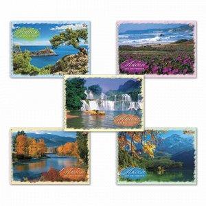 """Альбом для рисования, А4, 40 листов, спираль, обложка картон, HATBER VK, 205х300 мм, """"Природа"""", 40А4Cсп, A140819"""