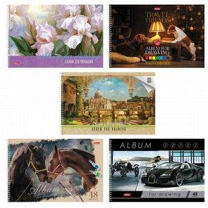 """Альбом для рисования, А4, 48 листов, спираль, обложка картон, HATBER, 205х300 мм, """"Ассорти"""", 48А4Всп, A274309"""
