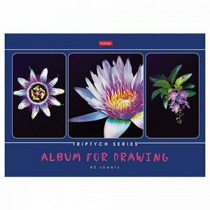 """Альбом для рисования А4 40 л., скоба, обложка картон, HATBER, 205х290 мм, """"Я рисую мой мир"""", 40А4В"""