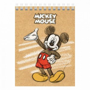 "Блокнот МАЛЫЙ ФОРМАТ (110х145 мм) А6, 40 л., гребень, обложка картон, клетка, HATBER, ""Микки Маус"", 40Б6В1гр"