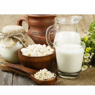 На здоровье! Вкусные натуральные сыры — Молочные продукты (молоко, творог, йогурт) — Сметана и творог