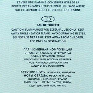 Туалетная вода мужская Elements Aqua, 100 мл