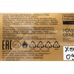 Туалетная вода мужская Elements Gold, 100 мл