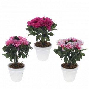 Цветы 714254 Азалия L10 W10 H26 см