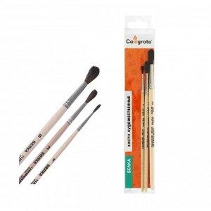 Набор кистей Белка 3 штуки, Calligrata №1 (круглые №: 1, 3, 5), деревянная ручка, в пенале