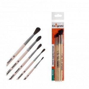 Набор кистей Белка 5 штук, Calligrata №4 (круглые №: 1, 2, 3, 4, 5), деревянная ручка