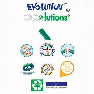 """Карандаш чернографитный BIC, 1 шт., """"Evolution"""", HB, без резинки, пластиковый, корпус зеленый, заточенный, 8803112"""
