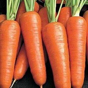 Морковь Бейби F1 (А) ЦП