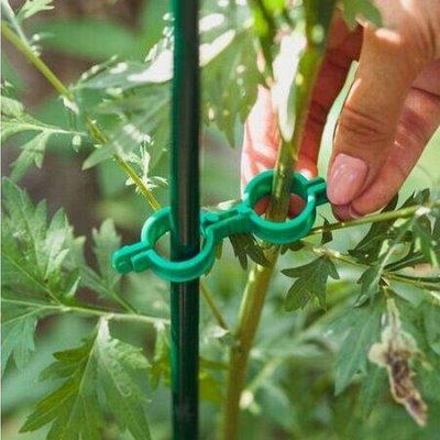 🌷 Кашпо, горшки, грунт - всё для домашних цветов и сада — Подвязки для растений