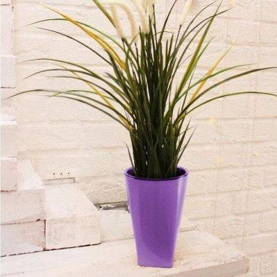 🌷 Кашпо, горшки, грунт - всё для домашних цветов и сада — От 1 до 2 л — пластик
