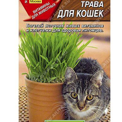 Семена АЭЛИТА: огромный выбор семян. В наличии!  — Трава для кошек — Для кошек