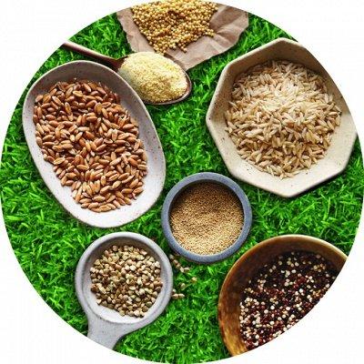 EcoFood ✦ ЦеНоПаД ✦ Полезные продукты для правил питания  — Семена, Зерновые, Крупы — Диетические продукты