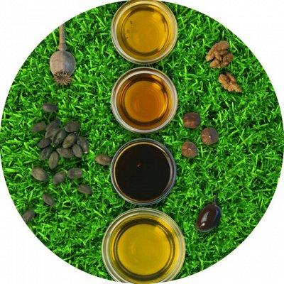 EcoFood ✦ ЦеНоПаД ✦ Полезные продукты для правил питания — АТМАН - Масло ГХИ и не только