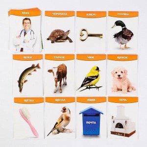 Обучающие логопедические карточки «Говорим буквы Ч и Щ», размер карточек 63 ? 87 мм