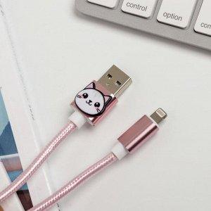 Набор: держатель для провода и кабель USB iPhone «Чудеса», 1 м