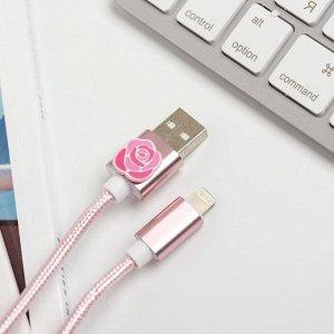 Набор: держатель для провода и кабель USB iPhone «Самой особенной», 1 м