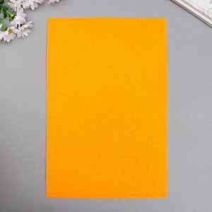 "Фетр жесткий 2 мм ""Мандариново-оранжевый"" набор 5 листов формат А4"