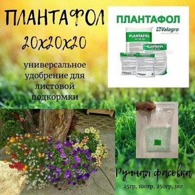 НОвинка! Плантафол 10-54-10 Взрыв цветения — Плантафол- удобрение для сада и города