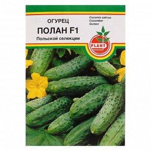 """Семена Огурец """"Полан"""", F1, пчёлоопыляемый, 15 шт"""