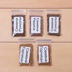 Набор для выращивания микрозелени Vegebox, 5 лотков, рукола, горчица, редис + раствор