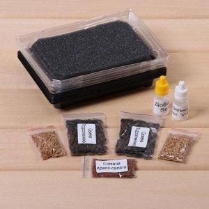 Набор для выращивания микрозелени Vegebox, 5 лотков, подсолнечник, пшеница, кресс-салат