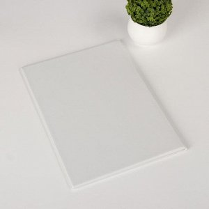 Папка для семейных документов, 3 комплекта, цвет белый