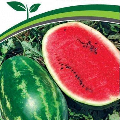 Семена Партнер и Семко. Летом — дешевле! Сроки годности 👍 — Арбузы, дыни