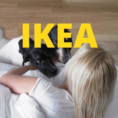 IKEA 547 Для ваших питомцев Много полезных штук