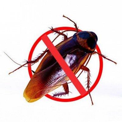 Удобная закупка. Все в одном месте, швабры, канц.товары .... — Эффективное Средство от тараканов! — Для дома
