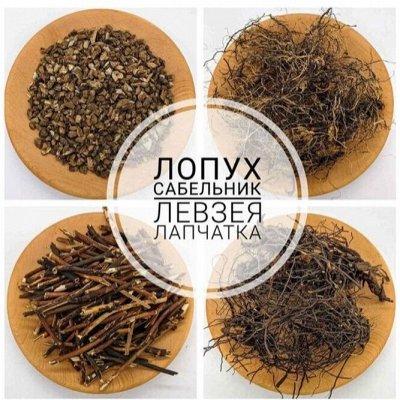 Байкальские травы - здоровье от природы