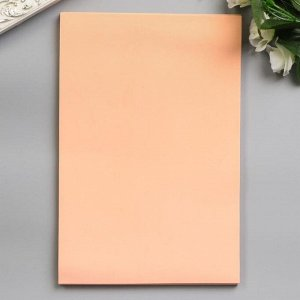 """Фоамиран """"Лосось"""" набор 10 листов, формат А4, 1 мм"""