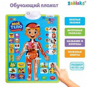 Обучающий плакат «Изучаем анатомию: Моё тело»