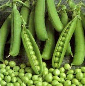 """Семена Горох """"Удачный"""" раннеспелый, овощной, низкорослый, сладкий"""